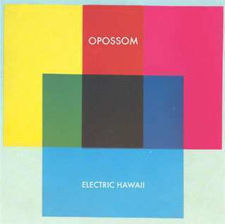Electric Hawaii by Opossom