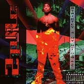 Strictly 4 My N.I.G.G.A.Z. by 2Pac