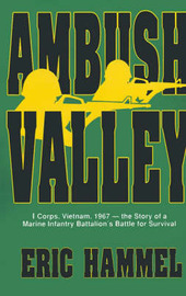 Ambush Valley by Eric M Hammel