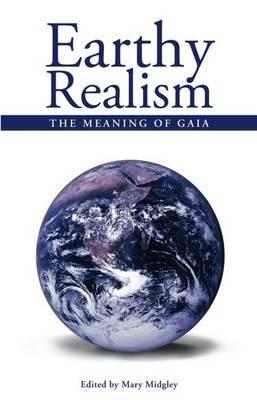 Earthy Realism image
