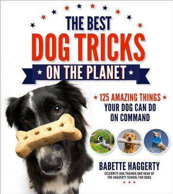 The Best Dog Tricks on the Planet by Babette Haggerty
