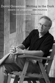 Writing in the Dark by David Grossman