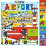Airport by Roger Priddy