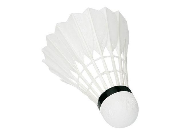 Sunflex Badminton Shuttles Feather - 79 x 12 (Fast