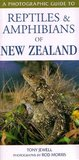 A Photographic Guide to Reptiles and Amphibians of New Zealand by Tony Jewell