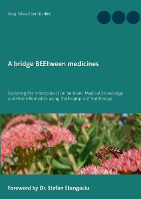 A Bridge Beetween Medicines by Silvia Eberl-Kadlec