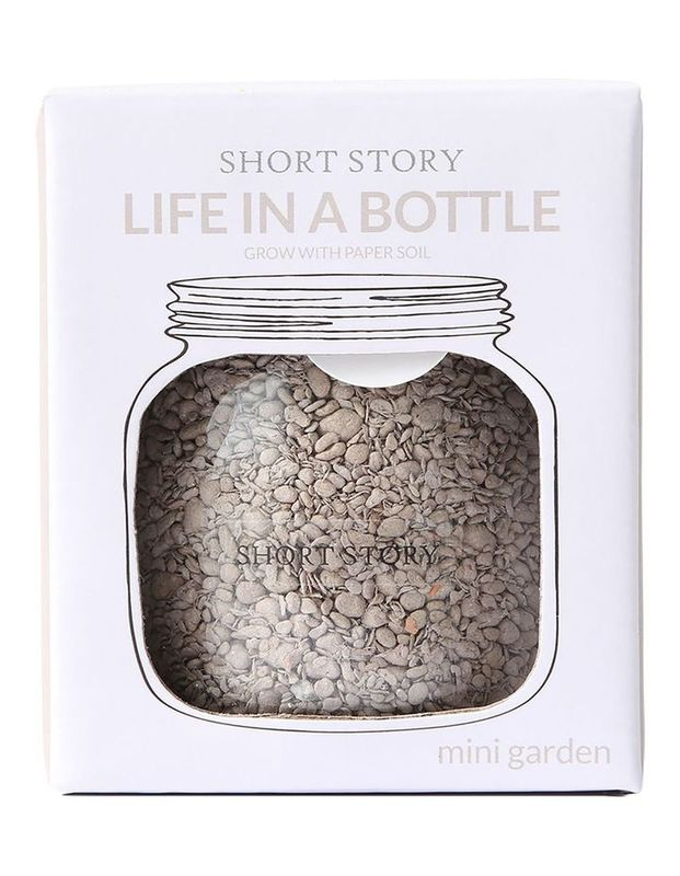 Short Story: Life in a Bottle - Grey
