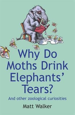 Why Do Moths Drink Elephants' Tears? by Matt Walker image