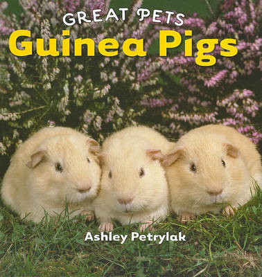 Guinea Pigs by Ashley Petrylak