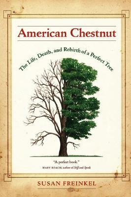 American Chestnut by Susan Freinkel image