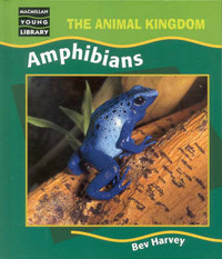 Amphibians -Animal Kingdom by HARVEY image