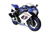 Testors Suzuki GSX-R1000 1/12 Model Kit