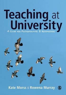 Teaching at University by Kate Morss
