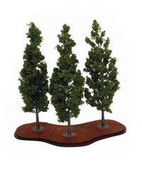 Mature Poplars Trees x 3