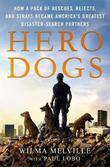 Hero Dogs by Paul Lobo