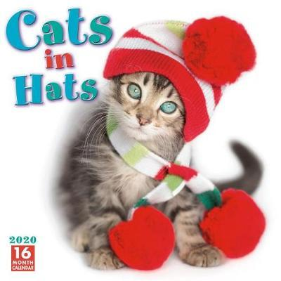 Cats in Hats by Sellers Publishing