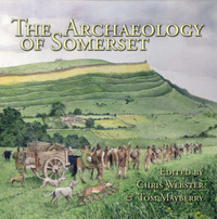 Archaeology of Somerset by Chris Webster image