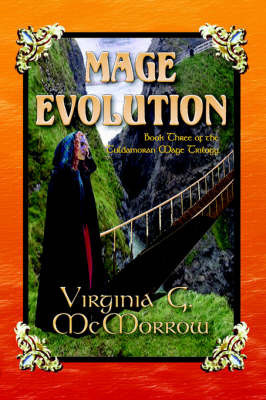 Mage Evolution by Virginia G McMorrow