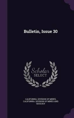 Bulletin, Issue 30 image
