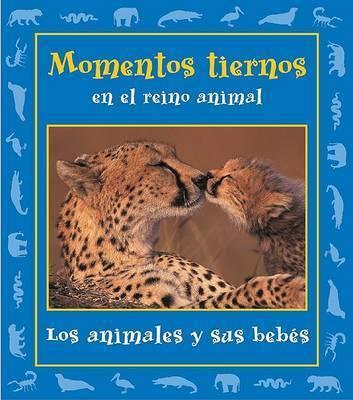 Momentos Tiernos En El Reino Animal: Los Animales y Sus Bebes by Stephanie Maze