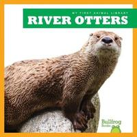 River Otters by Cari Meister