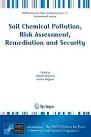 Soil Chemical Pollution, Risk Assessment, Remediation and Security image