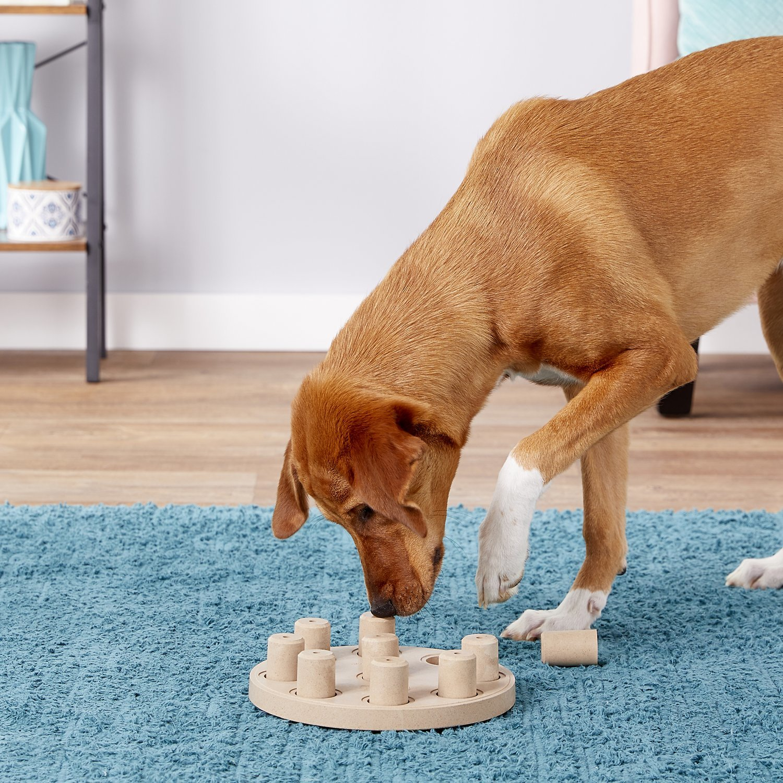 Outward Hound: Dog Smart Composite image