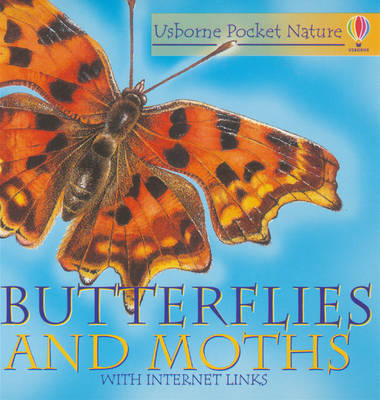 Butterflies and Moths image