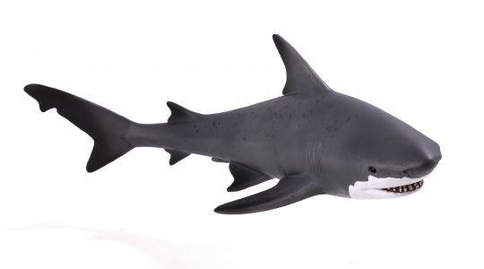 Animal Planet - Bull Shark