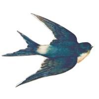 Wooden Flying Swallow Brooch