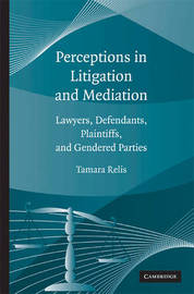 Perceptions in Litigation and Mediation by Tamara Relis image