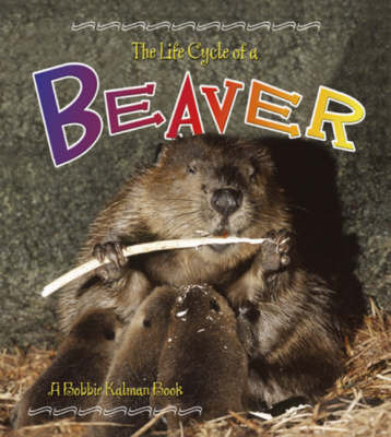 The Life Cycle of a Beaver by Bobbie Kalman