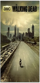 The Walking Dead Wall Poster (54)