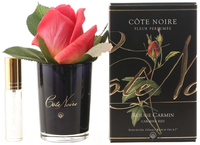Côte Noire Perfumed Natural Touch Rose Bud in Black (Carmine Red)