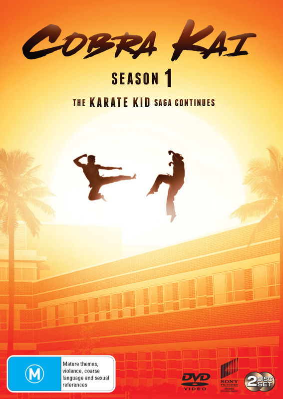 Cobra Kai Season 1 on DVD