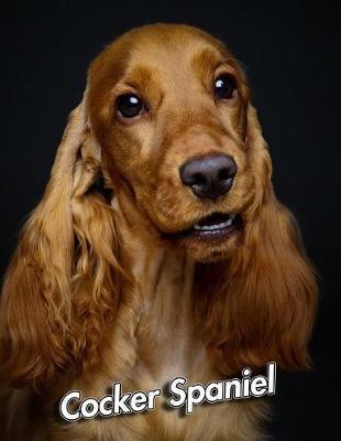 Cocker Spaniel by Notebooks Journals Xlpress