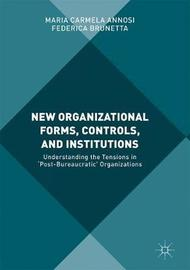 New Organizational Forms, Controls, and Institutions by Maria Carmela Annosi