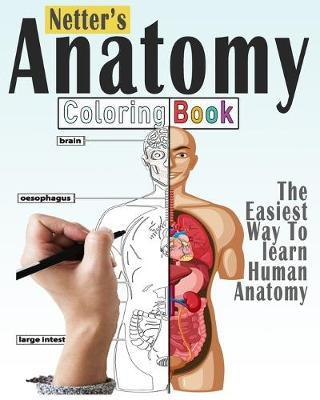 Netter\'s Anatomy Coloring Book | Bengen Publishing Book | In ...