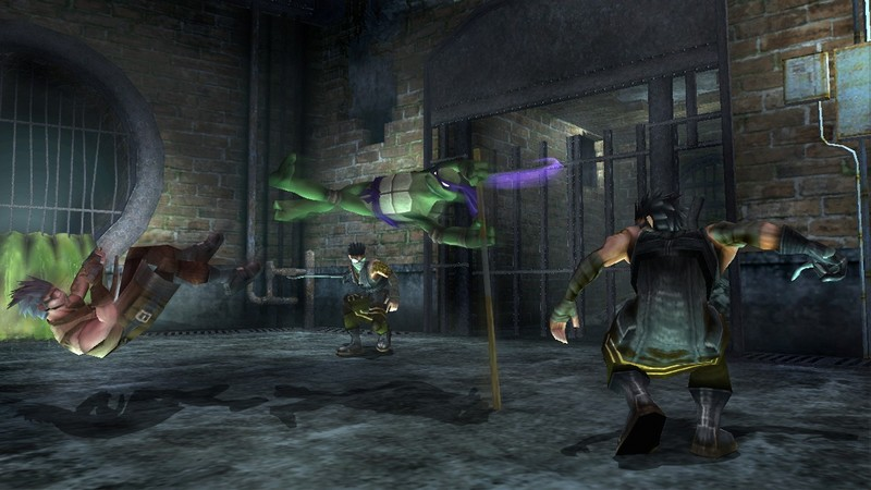 Teenage Mutant Ninja Turtles for PlayStation 2 image