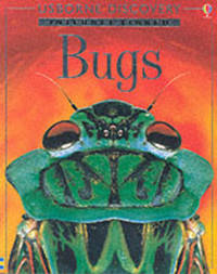 Bugs by Rosie Dickins image