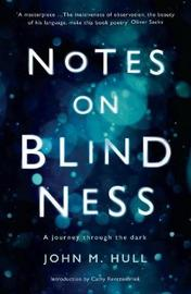 Notes on Blindness by John Hull