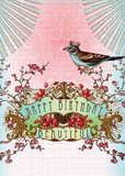 Papaya: Happy Birthday Beautiful Card