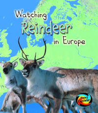 Watching Reindeer in Europe by Elizabeth Miles image