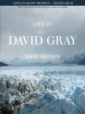 David Gray: Life in Slow Motion image