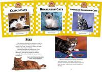 Cats Set 4 by Nancy Furstinger