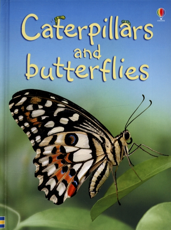 Caterpillars and Butterflies by Stephanie Turnbull image