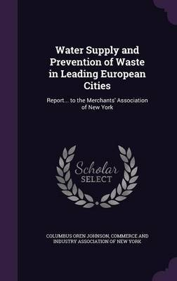 Water Supply and Prevention of Waste in Leading European Cities by Columbus Oren Johnson
