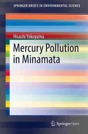 Mercury Pollution in Minamata by Hisashi Yokoyama