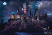 Harry Potter Maxi Poster - Hogwarts (861)
