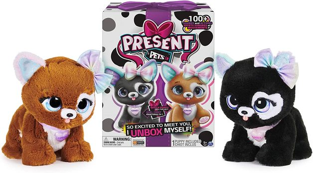Present Pets - Rainbow Glitter